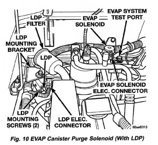 evap service port location