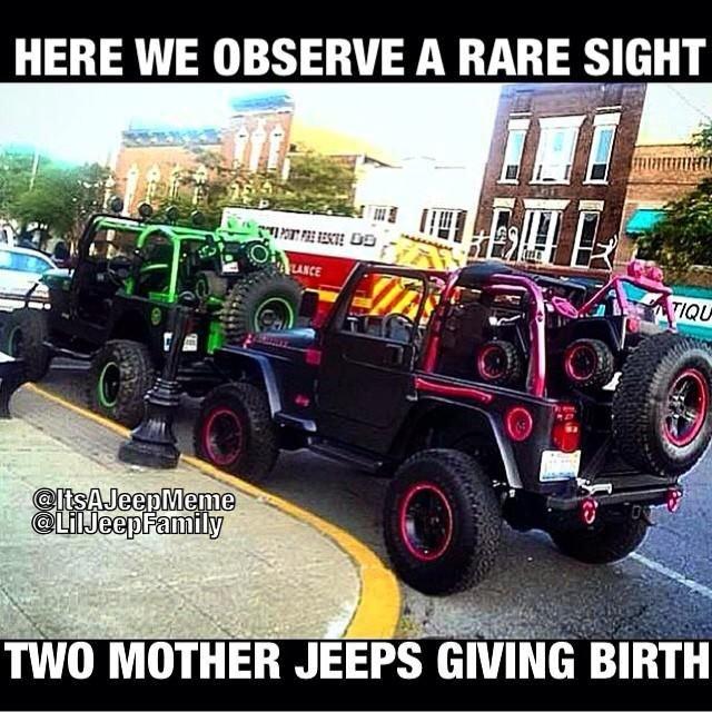 The Five Funniest Jeep Memes | 4WAAM |Jeep Wrangler Memes